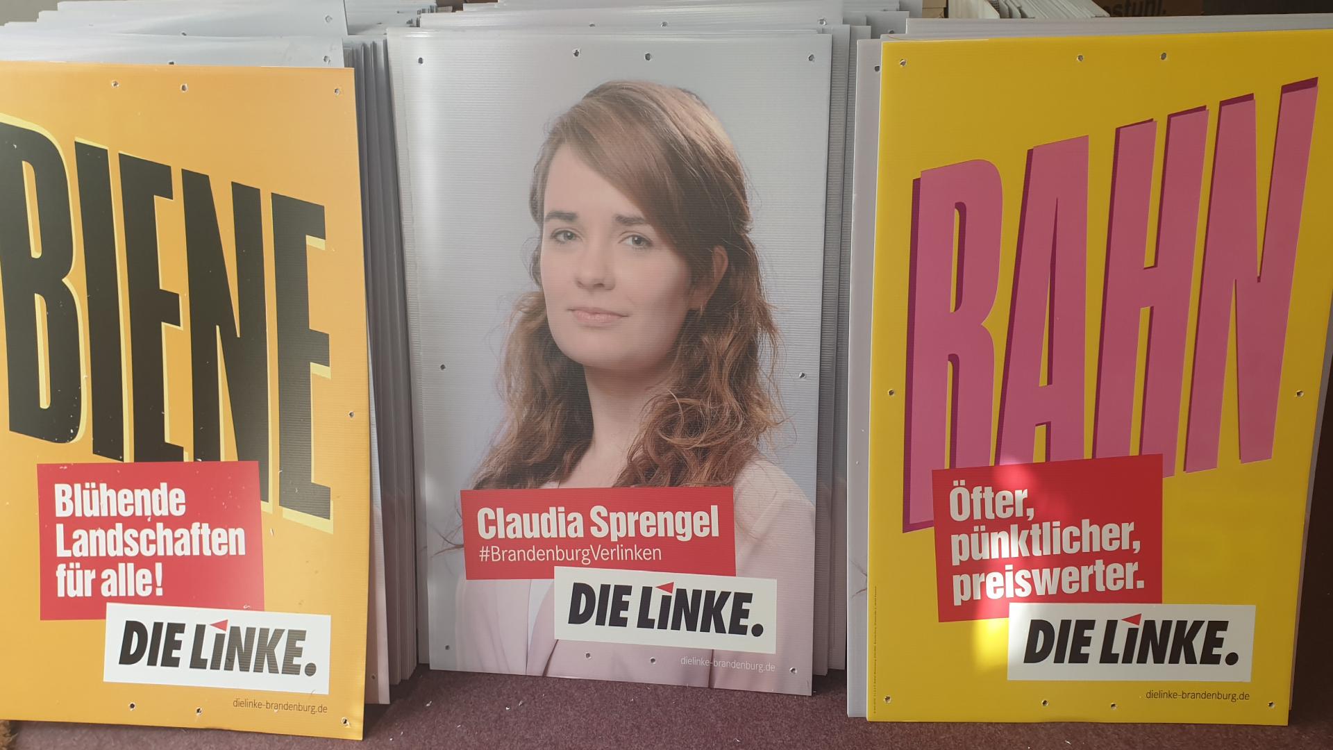 Wahlplakate für die Landtagswahlen 2019